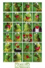 Kermit Collage