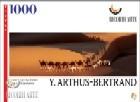 Camels Crossing Amber Dunas, Mauritania
