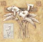 Meditteranean Flowers l