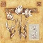 Mediterranean Flowers ll