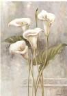 Botany l
