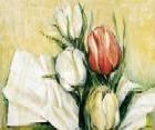 Tulipa Antica