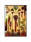 Egyption Ornament