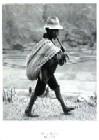 Peru 1954