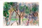 Woods Near The Yarkon River (S.G.) - Edition 280