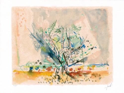 Olive Tree (S.G.)