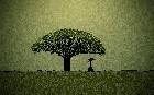 Tree Of Health