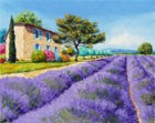 Bastide With Lavender
