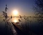 The Evening Sun