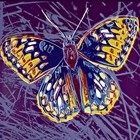 Endangered Species, Butterfly