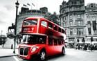 Red Magic Bus
