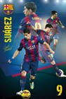 Suarez Collage 14/15