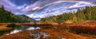 Goldstream Provincial Park panorama