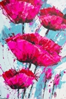 Pink Poppies Blue Sky