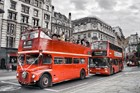 London Wedding Bus