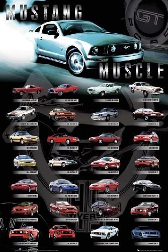 Mustang Comp