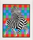 Zebras - Original serigraph 1975-1980