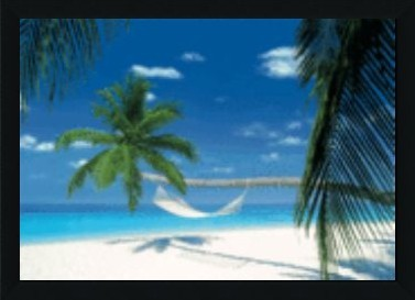 Maldives Island Hammock