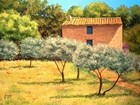 Olive trees cottage