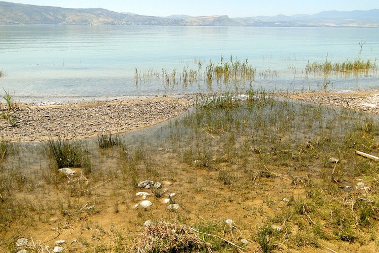 Shore of Lake Kinnaret